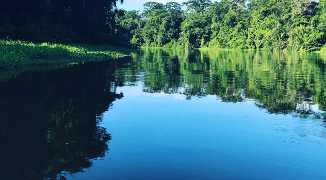 Animals and Adventure in Costa Rica: Tortuguero